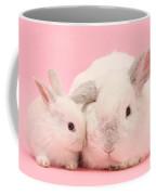 Lop Rabbits Coffee Mug