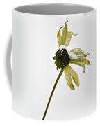 Love Me Not Coffee Mug