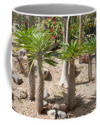Madagascar Palms Coffee Mug