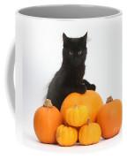 Maine Coon Kitten And Pumpkins Coffee Mug