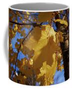 Maple In Fall Coffee Mug