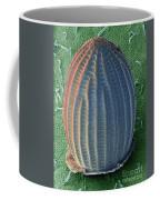 Monarch Butterfly Egg, Sem Coffee Mug