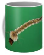 Mosquito Larva Coffee Mug