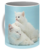 Mother Cat With Kitten Coffee Mug