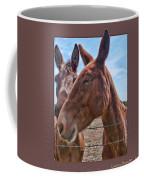 Mule Wink Coffee Mug
