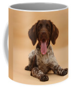 Munsterlander Coffee Mug