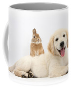 Netherland-cross Rabbit And Golden Coffee Mug