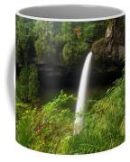 North Falls Canyon Coffee Mug