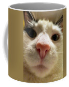Nosey Coffee Mug