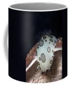 Nudibranch Feeding On A Sponge, Papua Coffee Mug