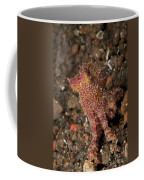 Ocellate Octopus With Two Blue Spots Coffee Mug