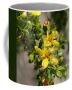 Ocotillo Wild Flower Coffee Mug