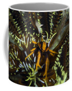Orange And Brown Elegant Squat Lobster Coffee Mug