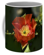 Orange Prickly Pear Blossom  Coffee Mug