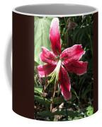 Orienpet Lily Named Scarlet Delight Coffee Mug