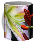 Oriental Lily Hybrid Named Mojave Coffee Mug