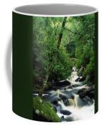 Owengarriff River, Killarney National Coffee Mug