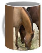 Parallel Ponies Coffee Mug