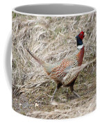 Pheasant Walking Coffee Mug