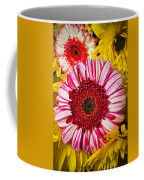 Pink And Yellow Mums Coffee Mug