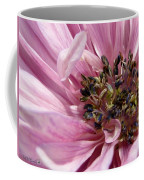 Pink Anemone From The St Brigid Mix Coffee Mug