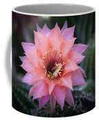 Pink Echinopsis Coffee Mug