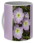 Pink Evening Primrose Wildflowers Coffee Mug