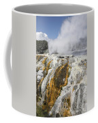 Pohutu And Prince Of Wales Feathers Coffee Mug