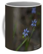 Pointed Blue-eyed Grass Coffee Mug