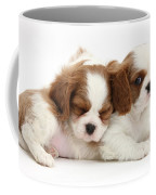 Puppies Coffee Mug