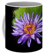 Purple Waterlily Coffee Mug