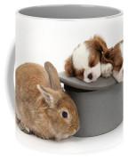 Rabbit And Spaniel Pups Coffee Mug