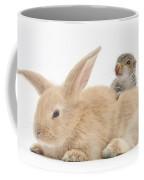Rabbit And Squirrel Coffee Mug