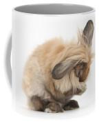Rabbit Grooming Coffee Mug