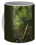 Rain Forest On Vancouver Island Coffee Mug