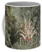 Rare Tiger Shrimp On Volcanic Sand Coffee Mug