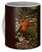Red Caped Mushroom 3 Coffee Mug