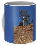 Red Pine Tree Coffee Mug by Ted Kinsman