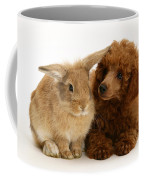 Red Toy Poodle And Rabbit Coffee Mug