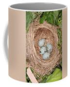 Red-winged Blackbird Nest Coffee Mug