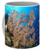 Reef Scene With Sea Fan, Papua New Coffee Mug