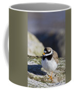 Ringed Plover Coffee Mug