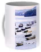 River Boats On Danube Coffee Mug by Elena Elisseeva