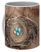 Robins Nest And Cowbird Egg Coffee Mug