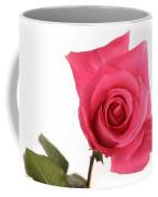 Rose Blooming Coffee Mug