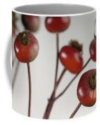 Rose Hips Rosa Rugosa Coffee Mug