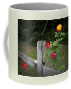 Roses And Fence  Coffee Mug