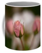 Roses Dream Coffee Mug