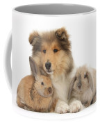 Rough Collie Pup With Two Young Rabbits Coffee Mug