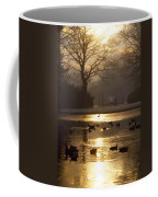 Saint Stephens Green, Dublin, Co Coffee Mug